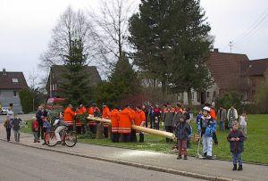 Maibaumstellen - Traditionell wird von der Feuerwehr jedes Jahr der Maibaum aufgestellt