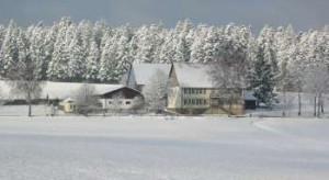 Zieglerhof